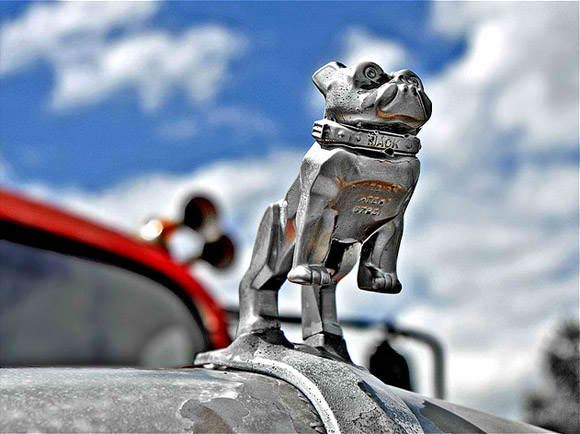 bulldog trucks